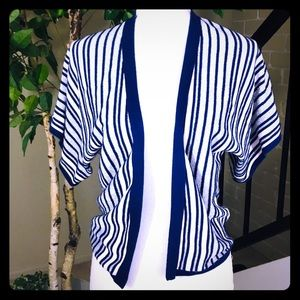 Charlotte Rouse Blue Silver stripe sweater Size S